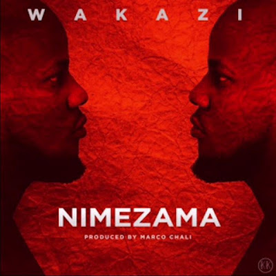 Photo of New AUDIO: Wakazi – Nimezama | DOWNLOAD