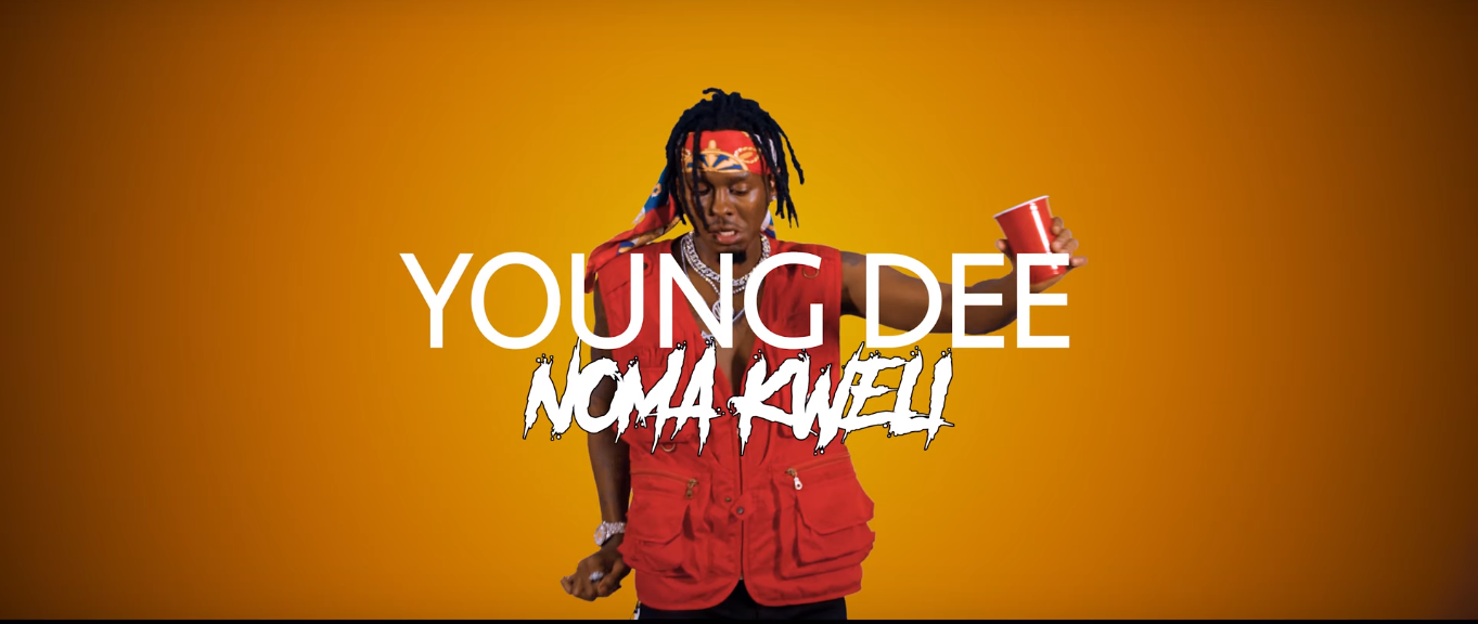 Photo of New VIDEO: Young Dee – Noma Kweli