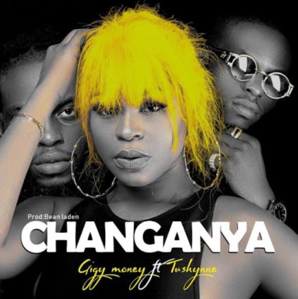 Photo of New AUDIO: Gigy Money Ft Tushynne – Changanya | Download