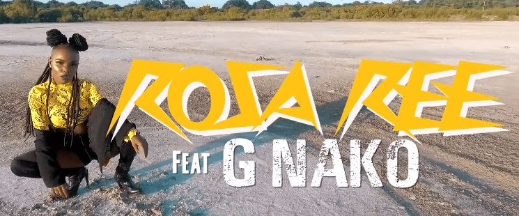 Photo of New VIDEO: Rosa Ree Ft G Nako – Dip In Whine It