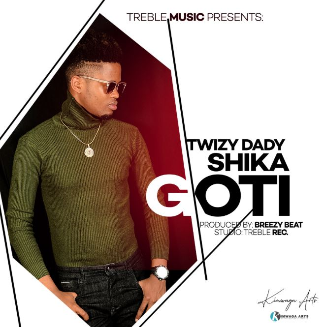 Photo of New AUDIO: Twizy Dady – Shika Goti | Download
