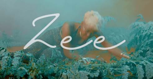 Photo of New VIDEO: Zee – Die for You