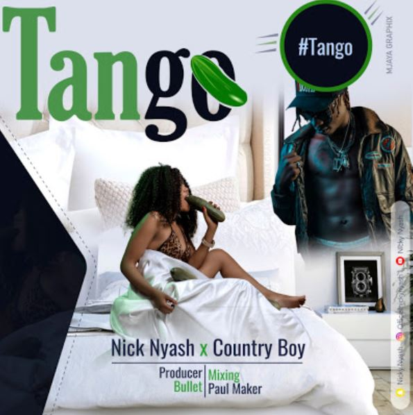 Photo of New AUDIO: Nicky Nyash X Country boy – Tango | Download Mp3