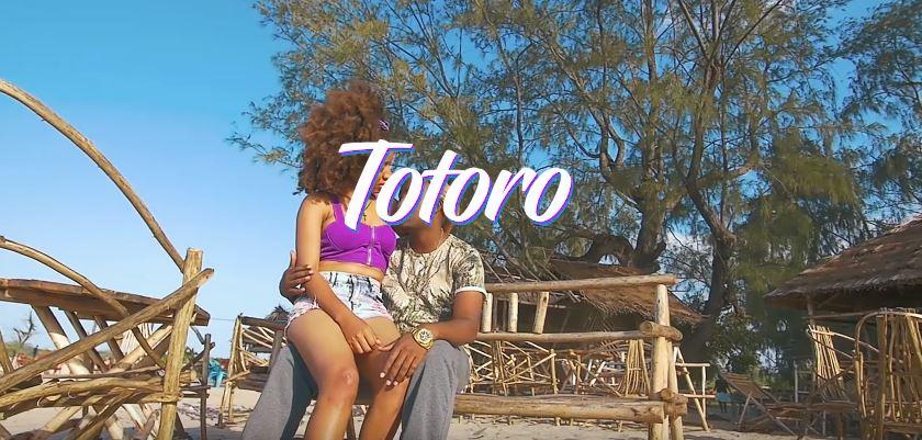 Photo of New VIDEO: Samata A – Totoro
