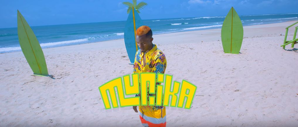 Photo of New VIDEO: Smile TheGenius – Murika