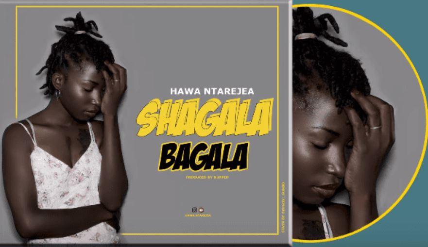 Photo of New AUDIO: Hawa – Shagala Bagala | Download Mp3