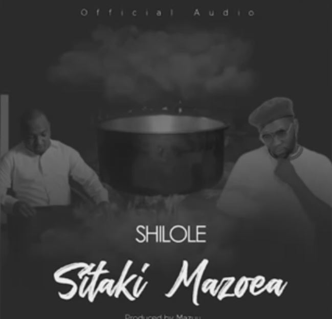 Photo of New AUDIO: Shilole – Sitaki Mazoea | Download Mp3