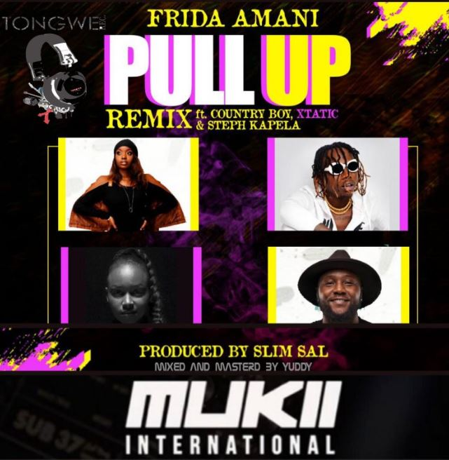 Photo of New AUDIO: Frida Amani Ft. COUNTRY BOY X xTatic X STEPH KAPELA – Pull Up Remix | Download Mp3