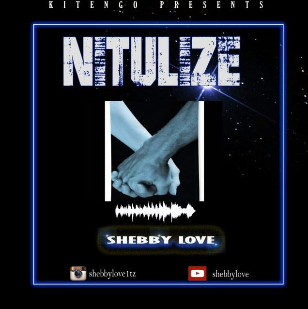 Photo of New AUDIO: Shebby Love – Nitulize | Download Mp3