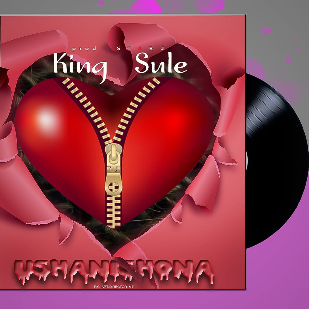 Photo of New AUDIO: King Sule – Ushanishona | Download Mp3