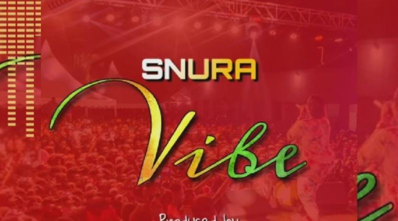 Photo of New AUDIO: Snura – VIBE | Download Mp3
