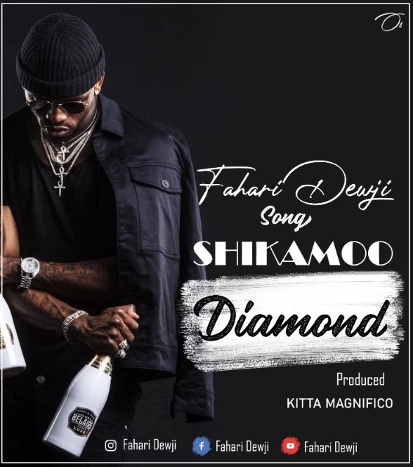 Photo of AUDIO: Fahari Dewji – Shikamoo Diamond | Download Mp3