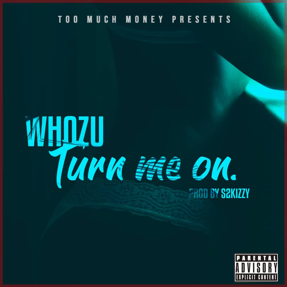 Photo of AUDIO: Whozu Ft. S2kizzy – Turn Me On | Download Mp3