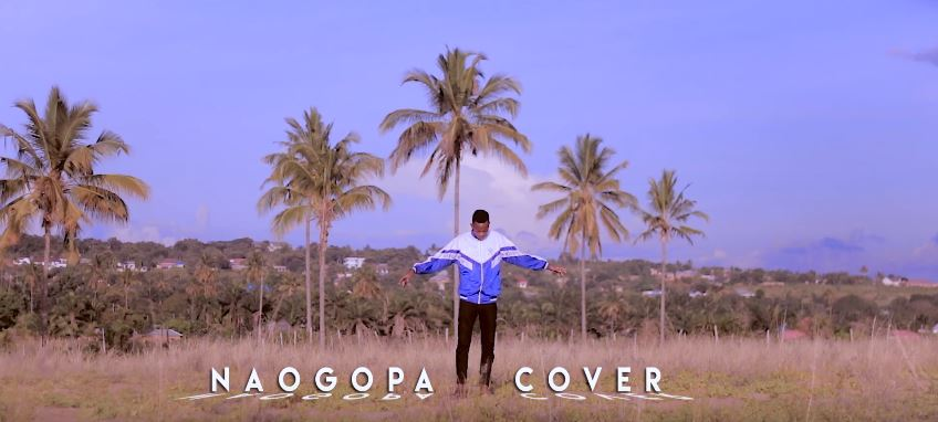 Photo of VIDEO: Harry – Naogopa Cover