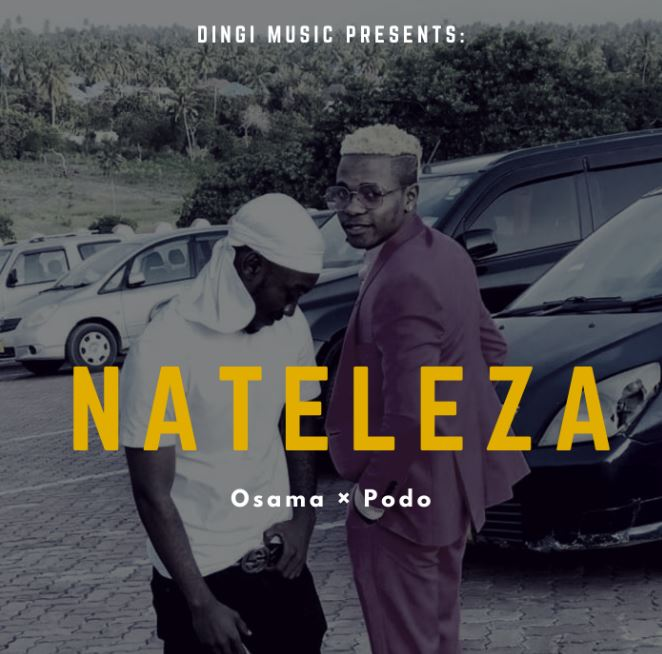 Photo of AUDIO: Osama & Podo – Nateleza | Download Mp3