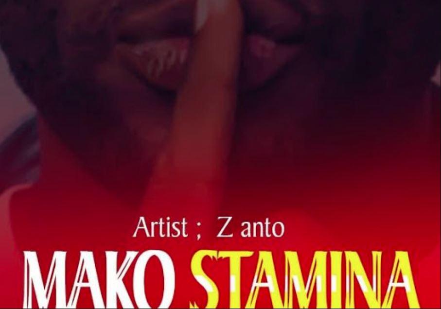 Photo of AUDIO: Z Anto – MAKO STAMINA | Download Mp3