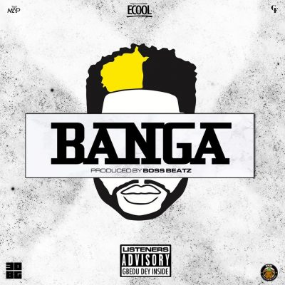 Photo of DJ ECool – Banga | Download Audio mp3