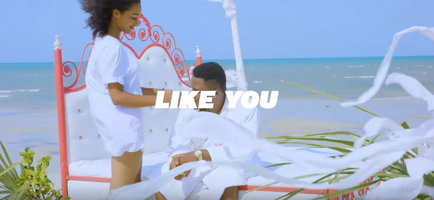 Photo of Snopa BigSome – Like You (VIDEO)