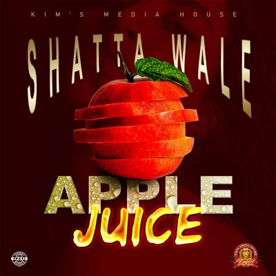 Photo of AUDIO: Shatta Wale – Apple Juice | Download mp3