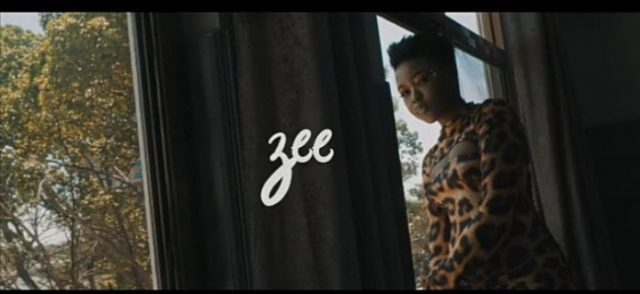 Photo of Zee – Sina (VIDEO)