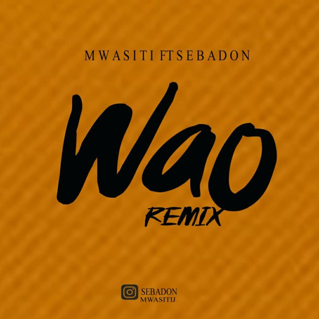 Photo of Mwasiti Ft SebaDon – Wao Remix | Download Audio mp3