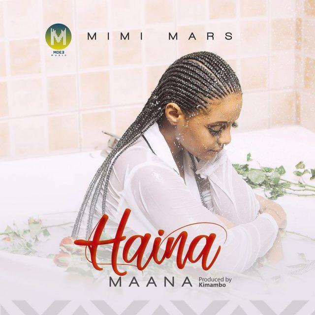 Photo of Mimi Mars – Haina Maana | Download Audio mp3