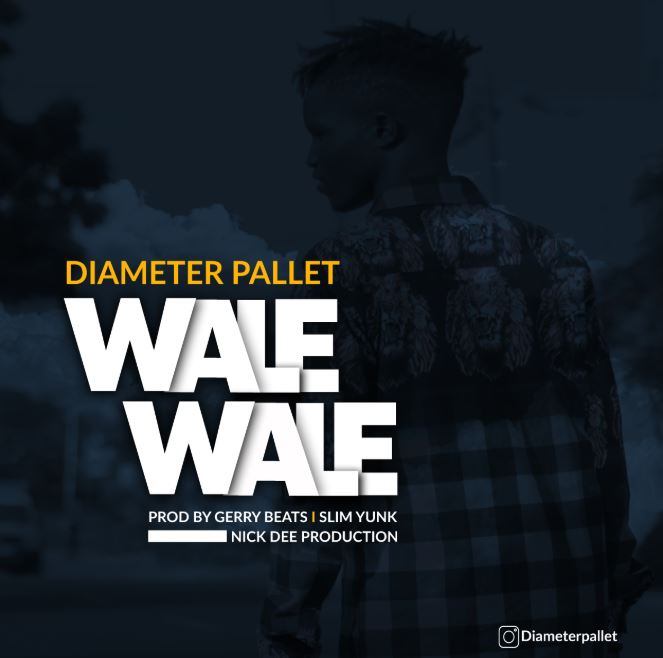 Photo of Diameter Pallet – Wale Wale | Download Audio Mp3