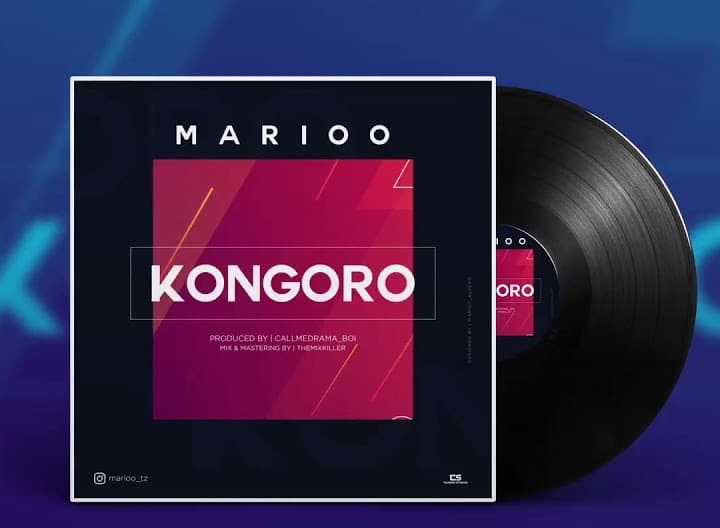 Photo of AUDIO: Marioo – Kongoro