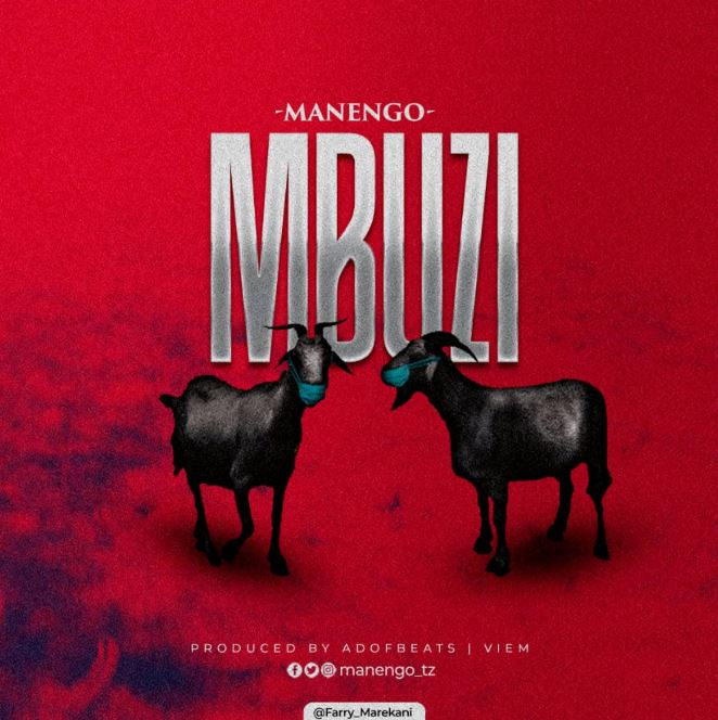 Photo of AUDIO: Manengo – Mbuzi