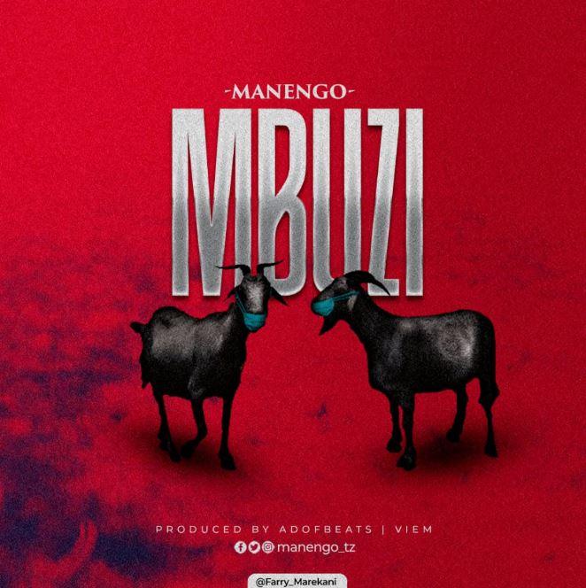 Photo of AUDIO: Manengo – Mbuzi