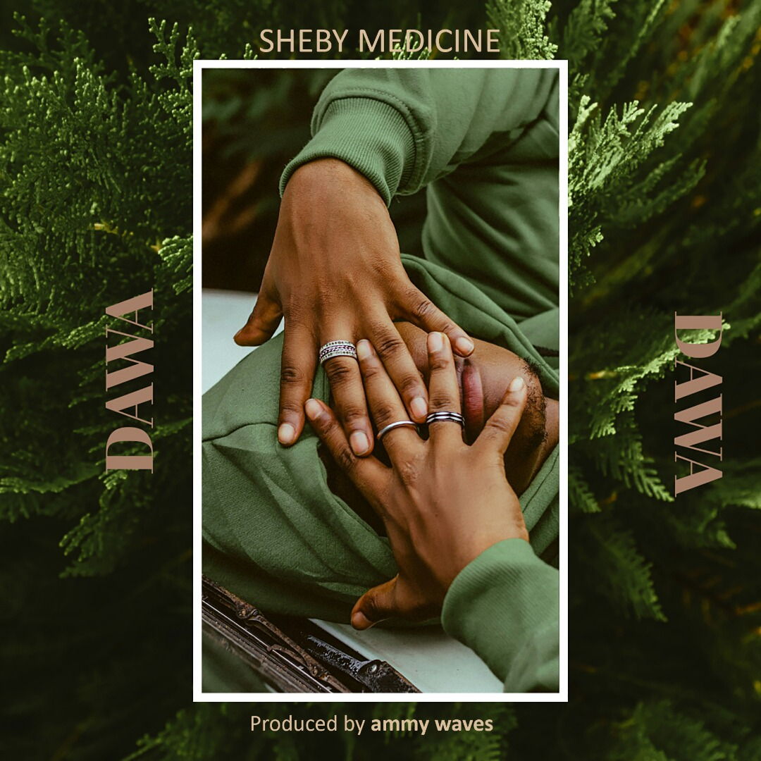 Photo of Sheby Medicine – Dawa | Download Audio mp3