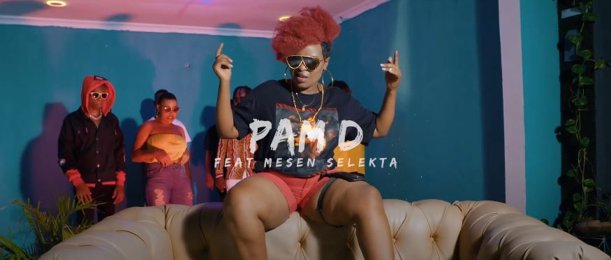Photo of VIDEO: Pam D Ft. Mesen Selekta – Umeniweza