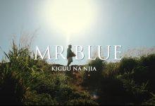 Photo of AUDIO: Mr Blue – Kiguu na Njia