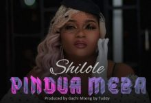 Photo of AUDIO: Shilole – Pindua Meza