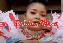 Photo of VIDEO: Shilole – Pindua Meza