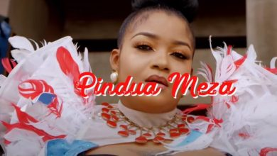 Photo of VIDEO: Shilole – Pindua Meza