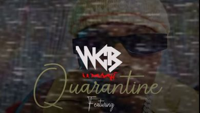 Photo of AUDIO: WCB Wasafi Ft. Diamond Platnumz, Rayvanny, Mbosso, Lava Lava, Queen Darleen & Zuchu – Quarantine
