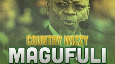 Photo of AUDIO: Country Wizzy – Magufuli (Zee la Kukomesha)