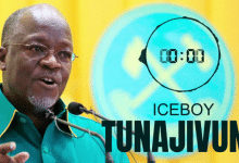 Photo of AUDIO: Ice Boy – TUNAJIVUNA