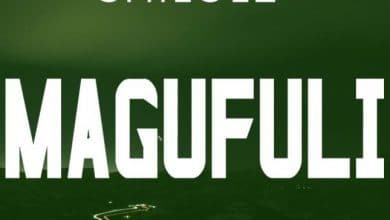Photo of AUDIO: Shilole – Magufuli