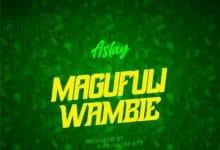 Photo of AUDIO: Aslay – Magufuli Wambie