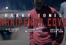 Photo of VIDEO: Harry Tones – Unanipenda Cover