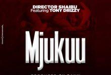Photo of AUDIO: Diretor Shaibu Ft. Tony Drizzy – Mjukuu