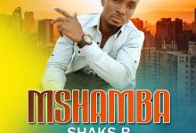 Photo of AUDIO: Shaks B – Mshamba