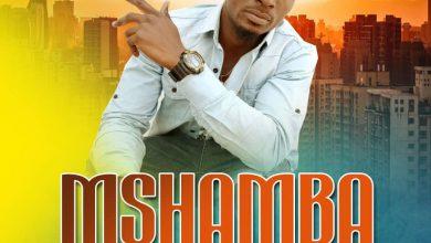 Photo of AUDIO: Shaks B – Mshamba