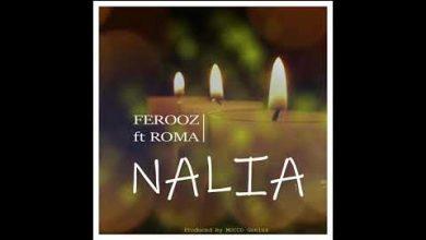 Photo of AUDIO: Ferooz ft Roma – NALIA