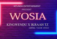 Photo of AUDIO: Kingwendu X ikraah Tz – Wosia