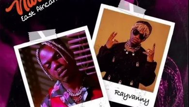 Photo of AUDIO: CKay ft Rayvanny – Love Nwantiti (East African Remix) | Download