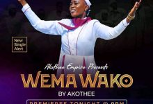 Photo of AUDIO: Akothee – Wema Wako | Download