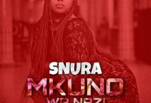 Photo of AUDIO: SNURA – MKUNO WA NAZI